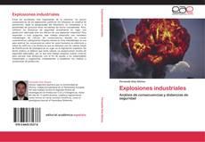Portada del libro de Explosiones industriales