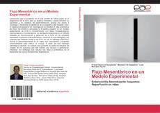 Flujo Mesentérico en un Modelo Experimental kitap kapağı