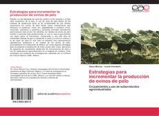Обложка Estrategias para incrementar la producción de ovinos de pelo