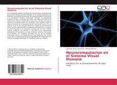 Bookcover of Neurocomputacion en el Sistema Visual Humano