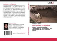 Bookcover of De calles a callejuelas