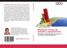 Portada del libro de Modelado cinético de petróleo y agrupamiento