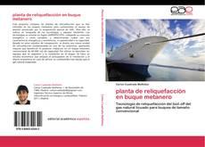 Capa do livro de planta de reliquefacción en buque metanero
