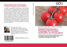 Bookcover of Calidad Nutricional y Fisiología de Tomates Cultivados en Invernadero