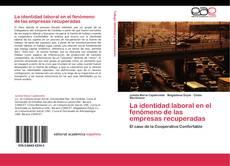 Couverture de La identidad laboral en el fenómeno de las empresas recuperadas