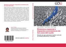 Bookcover of Dinámica espacial e impactos económicos de los usos del suelo