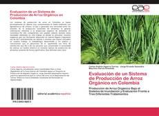 Evaluación de un Sistema de Producción de Arroz Orgánico en Colombia的封面