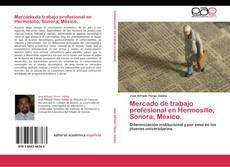Copertina di Mercado de trabajo profesional en Hermosillo, Sonora, México.