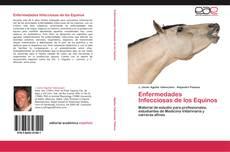Enfermedades Infecciosas de los Equinos的封面