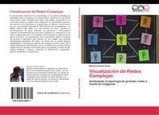 Bookcover of Visualización de Redes Complejas