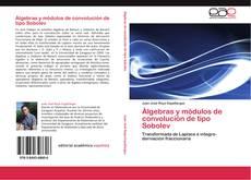 Bookcover of Álgebras y módulos de convolución de tipo Sobolev