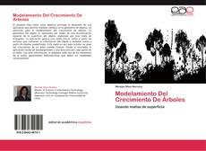 Copertina di Modelamiento Del Crecimiento De Árboles