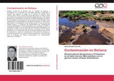 Bookcover of Contaminación en Doñana