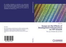 Bookcover of Essays on the Effects of Development Infrastructure on TFP Growth