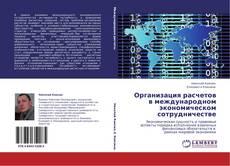 Организация расчетов в международном экономическом сотрудничестве的封面