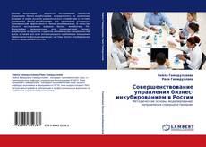 Обложка Совершенствование управления бизнес-инкубированием в России