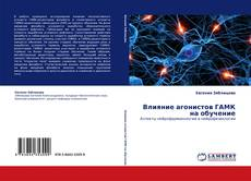 Bookcover of Влияние агонистов ГАМК на обучение