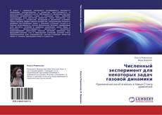 Buchcover von Численный эксперимент для некоторых задач газовой динамики
