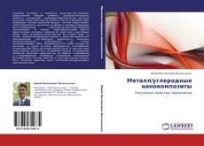 Portada del libro de Металл/углеродные нанокомпозиты