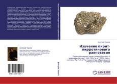 Bookcover of Изучение пирит-пирротинового равновесия