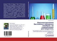 Borítókép a  Биоэлектрохимия бислойных липидных мембран, не содержащих растворитель - hoz
