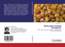 Bookcover of Культура тканей кукурузы