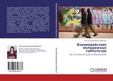 Bookcover of Взаимодействие молодежных субкультур
