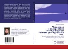 Buchcover von Численное моделирование нестационарных течений реагирующего газа.