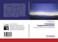 Bookcover of ГРОЗОВЫЕ РАДИОИМПУЛЬСЫ