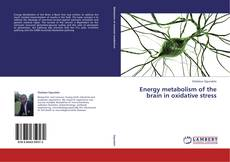 Bookcover of Energy metabolism of the brain in oxidative stress