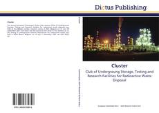 Bookcover of Cluster