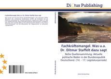 Capa do livro de Fachkräftemangel. Was u.a. Dr. Ditmar Staffelt dazu sagt