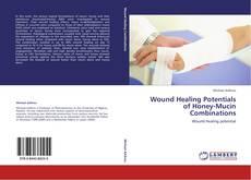 Capa do livro de Wound Healing Potentials of Honey-Mucin Combinations
