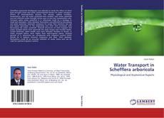Bookcover of Water Transport in Schefflera arboricola