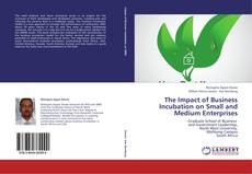 Bookcover of The Impact of Business Incubation on Small and Medium Enterprises