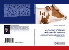 Bookcover of Mechanism of disease resistance in Sorghum