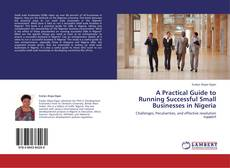 A Practical Guide to Running Successful Small  Businesses in Nigeria的封面