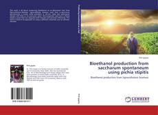 Bookcover of Bioethanol production from saccharum spontaneum using pichia stipitis
