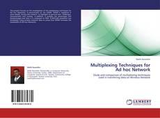 Multiplexing Techniques for Ad hoc Network的封面