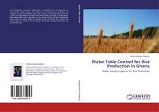 Bookcover of Water Table Control for Rice Production in Ghana