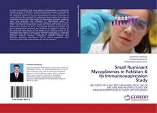 Bookcover of Small Ruminant Mycoplasmas in Pakistan & its Immunosuppression Study