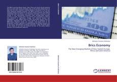 Portada del libro de Brics Economy