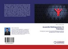 Juvenile Delinquency in Pakistan的封面