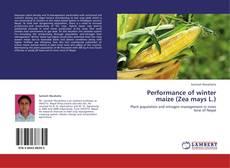 Copertina di Performance of winter maize (Zea mays L.)