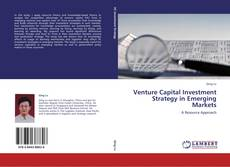 Bookcover of Venture Capital Investment Strategy in Emerging Markets