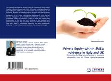 Private Equity within SMEs: evidence in Italy and UK的封面