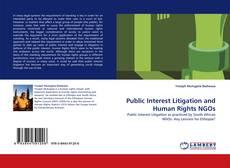 Couverture de Public Interest Litigation and Human Rights NGOs