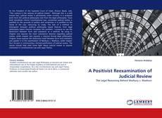 Bookcover of A Positivist Reexamination of Judicial Review