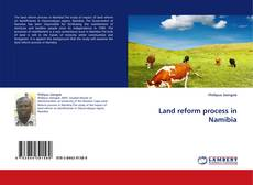 Bookcover of Land reform process in Namibia