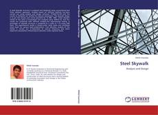 Bookcover of Steel Skywalk